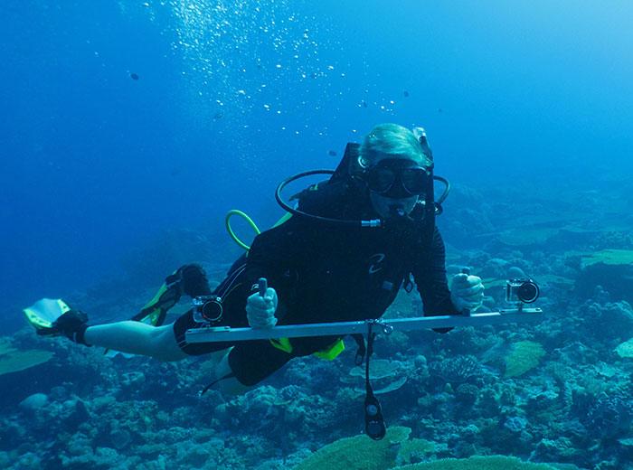 Mengenal dan Menjaga Kekayaan Laut Kita