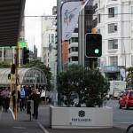 Jurusan-Jurusan Menarik di Ibukota New Zealand yang Menawan