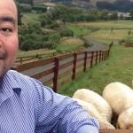 Arthur Chin, dari Singapura Jadi Peternak di New Zealand
